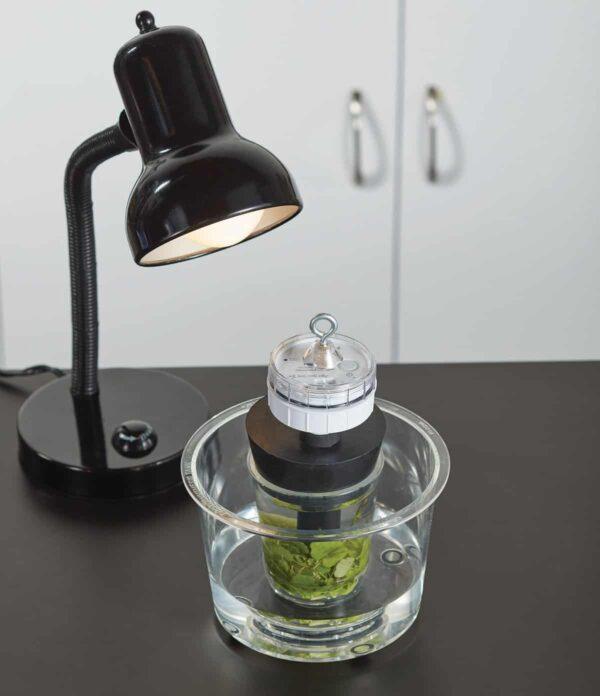 Беспроводной оптический датчик растворенного в воде кислорода  PASCO