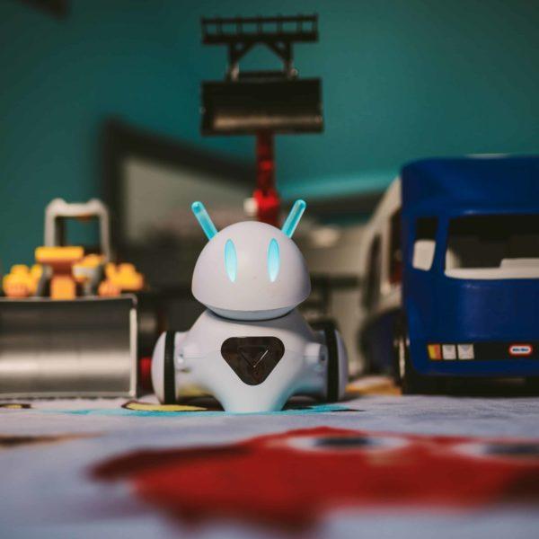 Footon robot (home)
